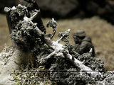 """RETIRED & BRAND NEW"" Build-a-Rama 1:32 Hand Painted WWII Deluxe ""Winter"" Blasted Tree Terrain Set"