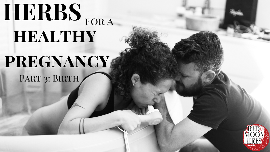 Herbs for a Healthy Pregnancy and Birth Part 3: Labor and Birth