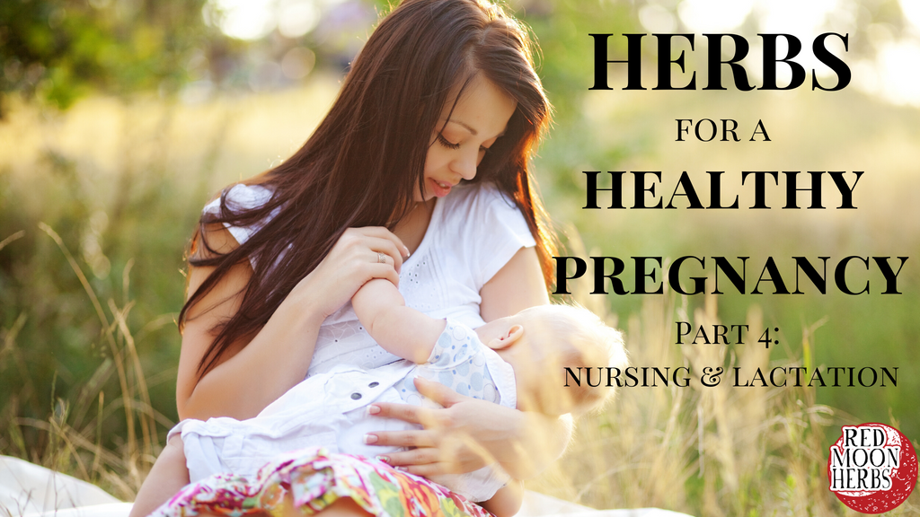 Herbs for a Healthy Pregnancy and Birth Part 4: Nursing and Lactation