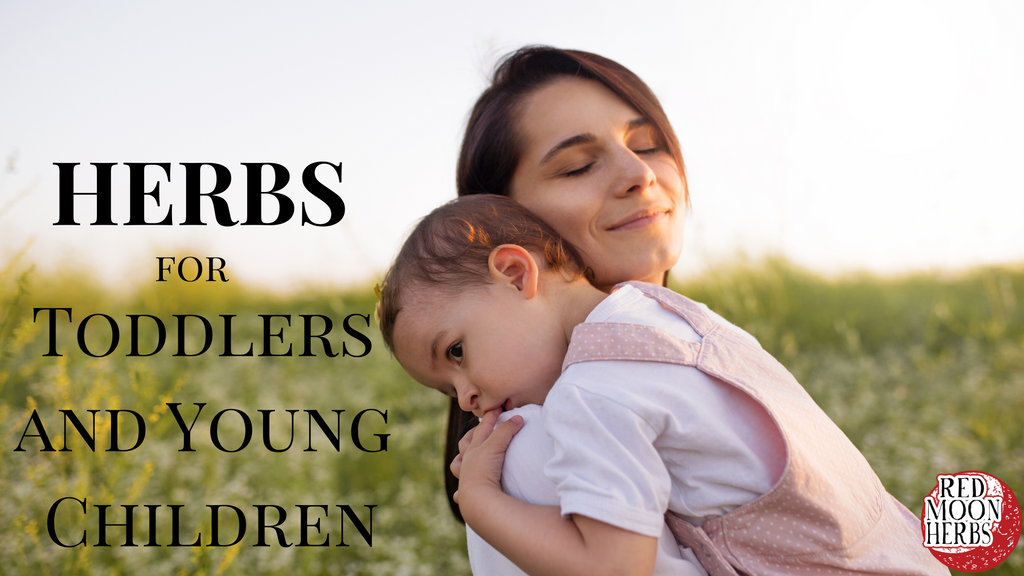 Herbs for Toddlers and Young Children