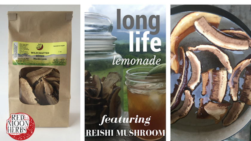 Reishi Mushroom Tea Lemonade Recipe Immune Health