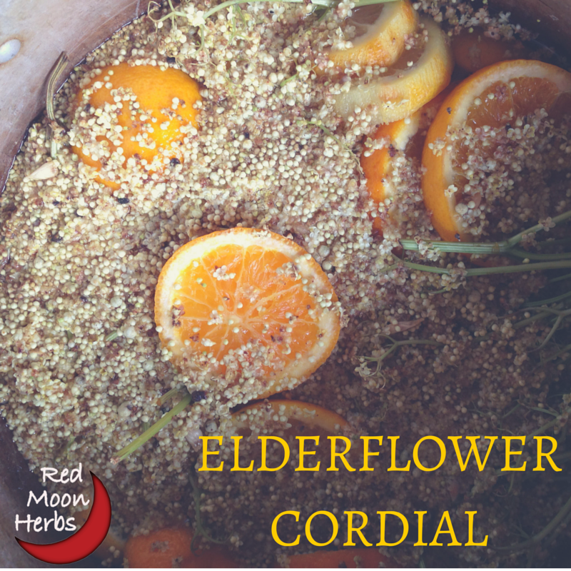 Cordially Yours: Elderflower Cordial