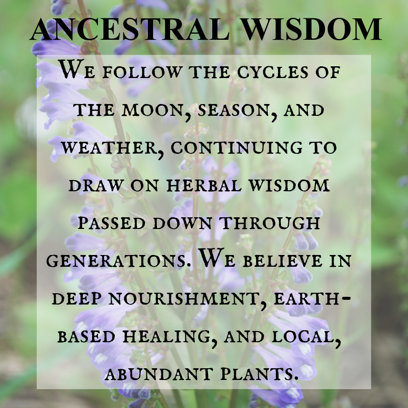 Ancestral Wisdom Following the Cycles of the Moon Season and Weather for Herbal Wisdom