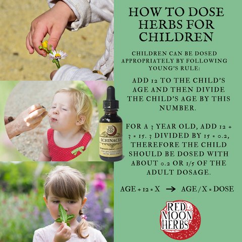 How to Dose Herbs for Children Young's Rule
