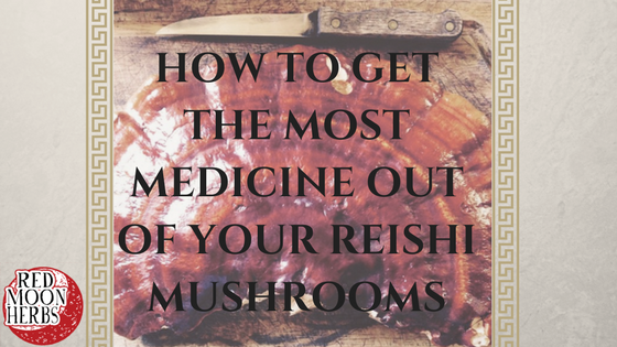 How to Get the Most Medicine Out of Your Reishi Mushrooms
