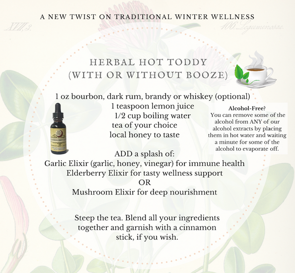 Herbal Hot Toddy Recipe for Wellness Cocktail