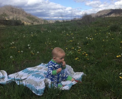 Baby picking dandelions