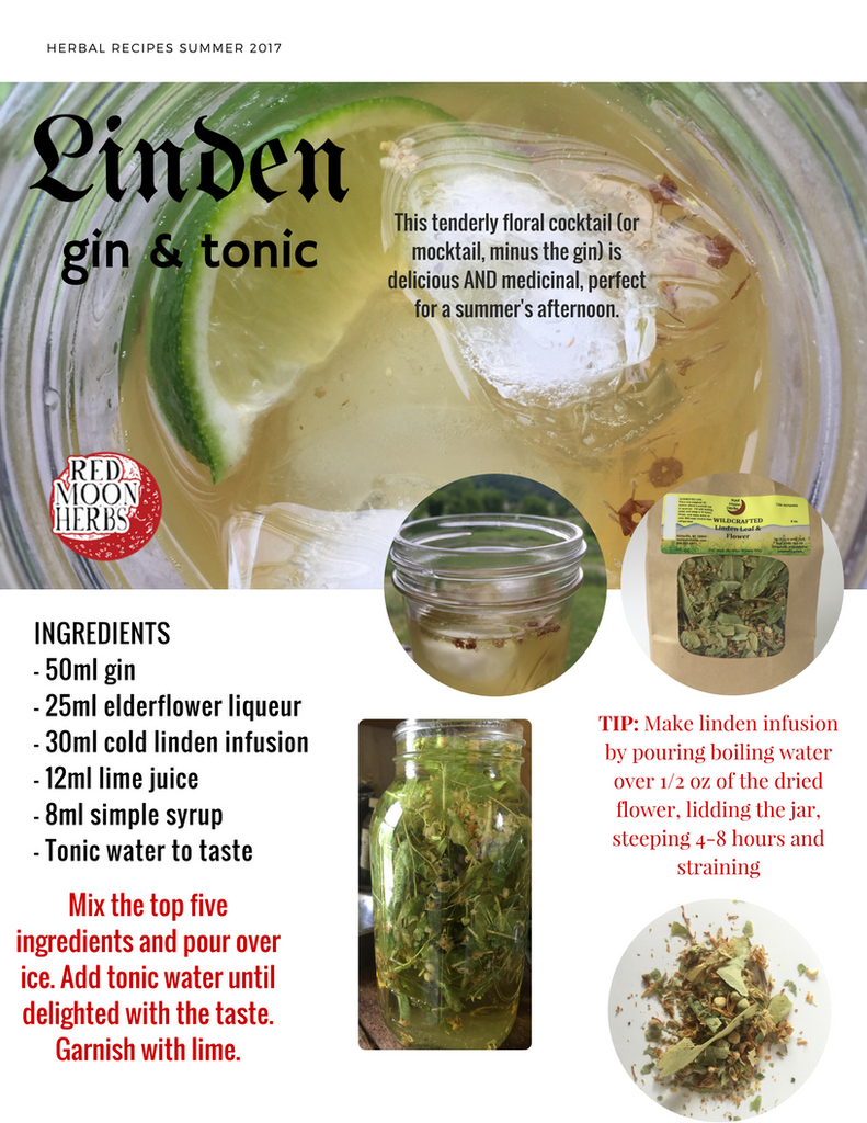 Linden Flower Blossom Gin & Tonic Herbal Cocktail Recipe