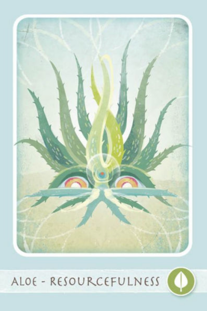 The Herbal Healing Deck Tarot Cards Aloe
