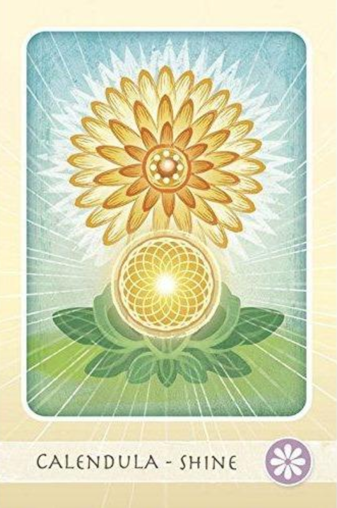 The Herbal Healing Deck Tarot Cards Calendula