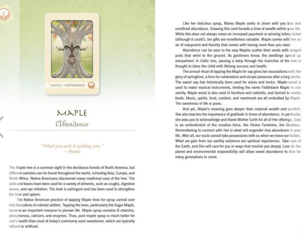 The Herbal Healing Deck Tarot Cards Maple