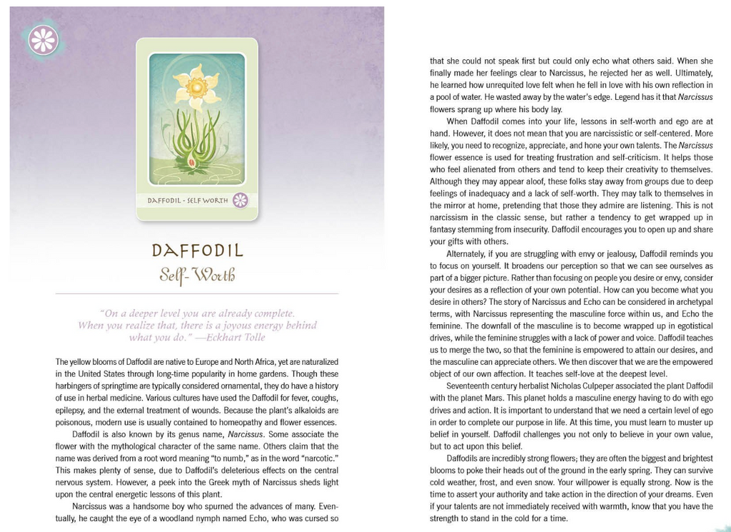 The Herbal Healing Deck Tarot Cards Daffodil