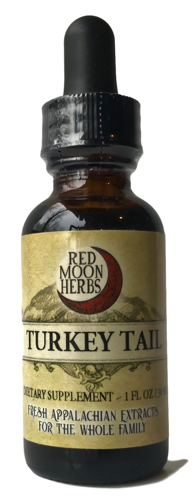 Turkey Tail Adaptogen Mushroom (Trametes versicolor) Herbal Extract for Immune System Health and Stress
