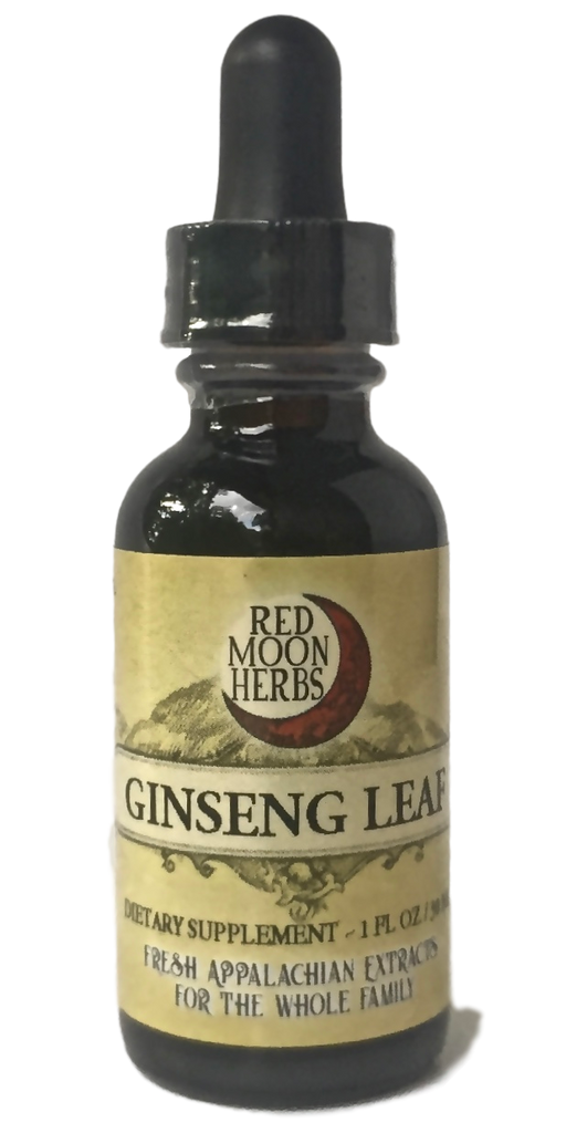 American Ginseng Leaf (Panax quinquefolius)-Extracts-Red Moon Herbs