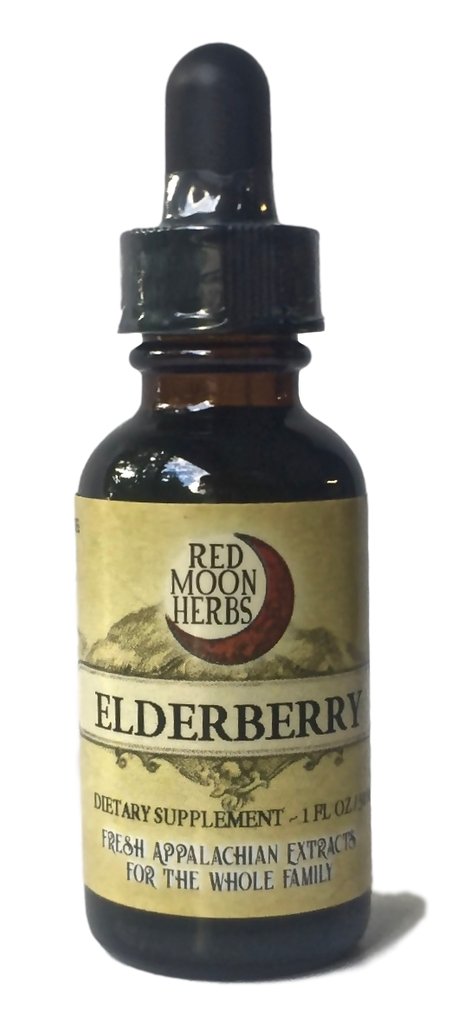 Elderberry (Sambucus canadensis/nigra) Herbal Extract for Immune Health and Wellness