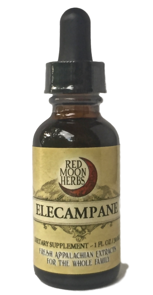 Elecampane (Inula helenium) Herbal Extract Bottle for Respiratory Health