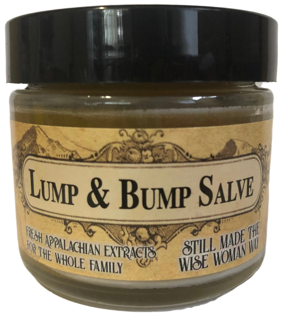 Lump & Bump Herbal Salve with Arnica, Calendula, Pine, and Yellow Dock for Bruises, Sores, and Skin Health