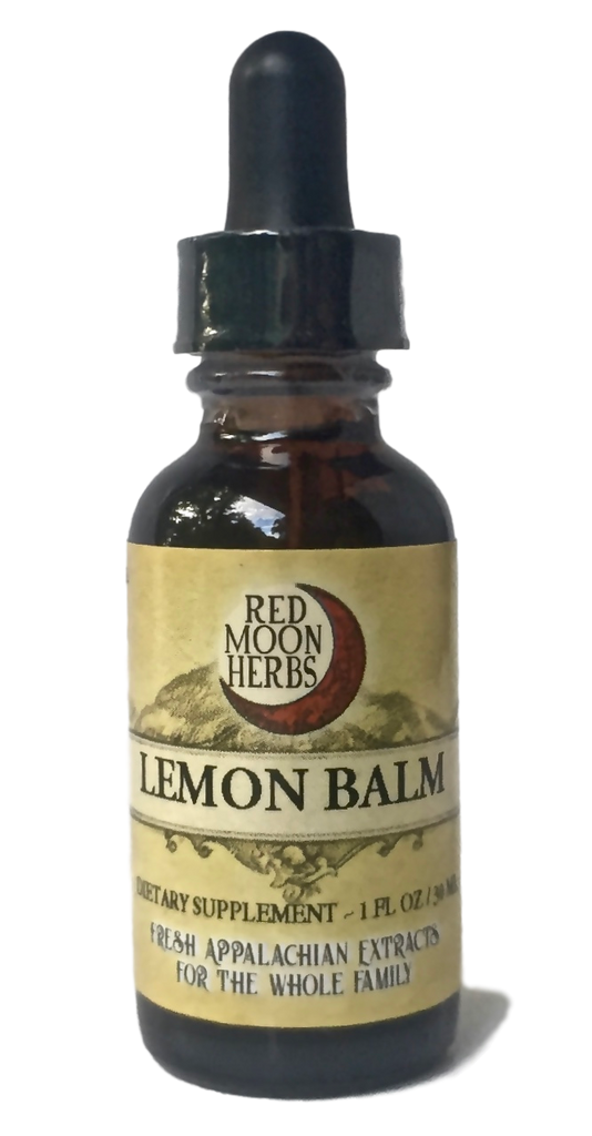 Lemon Balm (Melissa officinalis) Herbal Extract for Immune and Mental Health