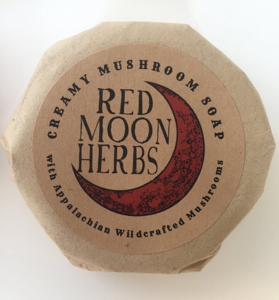 Cream of Mushroom Soap