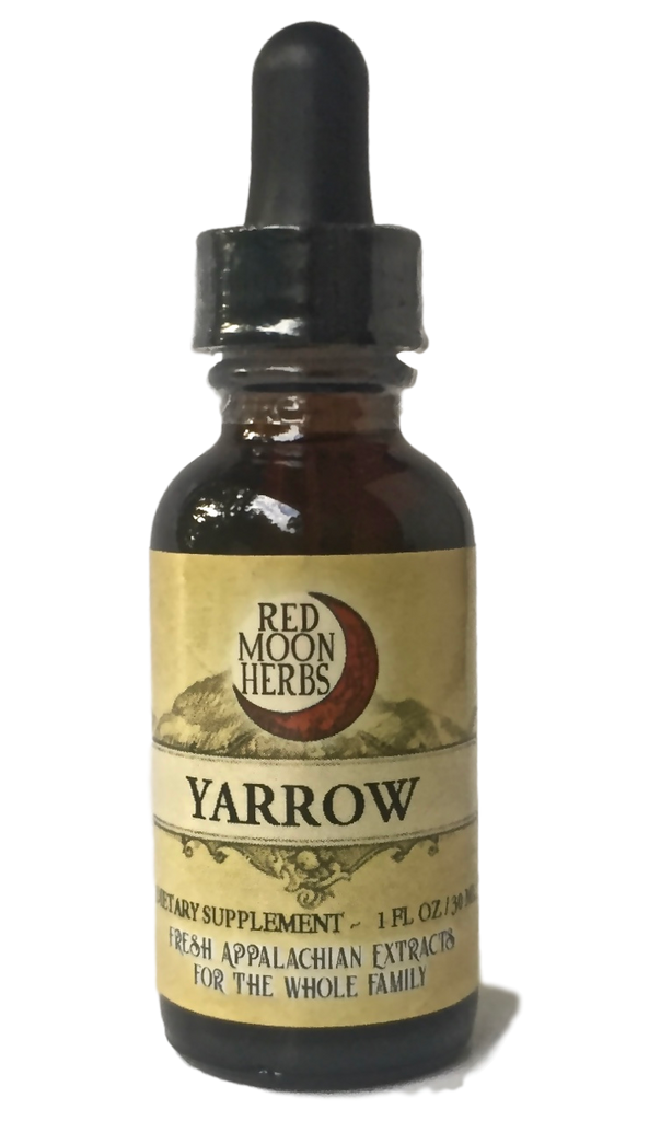 Yarrow (Achillea millefolium) Herbal Extract for Immune Health, Digestion, and Bug Repellent