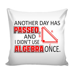 Funny Math Algebra Graphic Pillow Cover Another Day Has Passed And