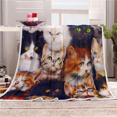 Super Cute Cat Nap Velvet Sherpa Plush Throw Blanket