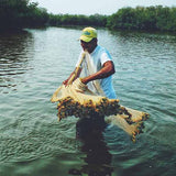 Mangrove Fishing Tour In La Boquilla