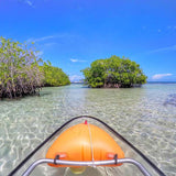 Mangrove Glass-Bottom Kayak and Snorkel - Juan Ballena | Travel Experiences in Cartagena - 2