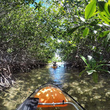 Mangrove Glass-Bottom Kayak and Snorkel - Juan Ballena | Travel Experiences in Cartagena - 3