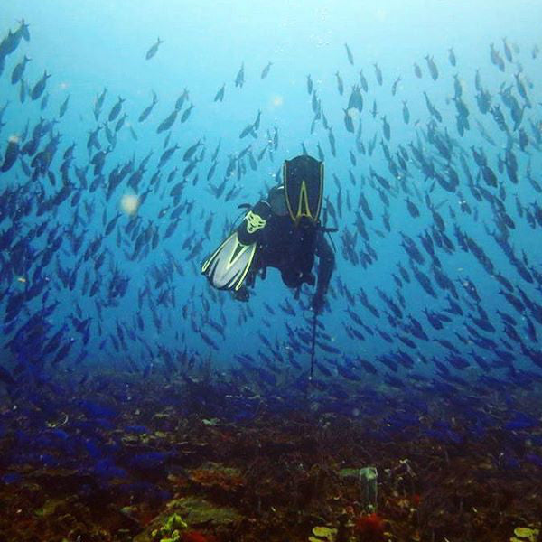 Scuba Diving In Baru - Cartagena