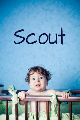 Scout Name Wall Decal - Create & Ship
