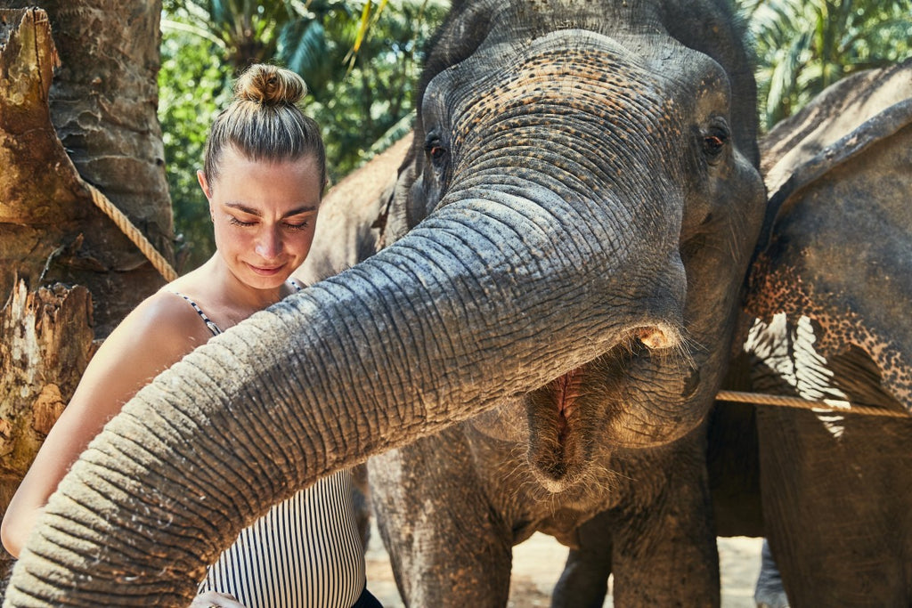 Vegan woman chooses vegan lifestyle for the animals, like this Asian elephant.