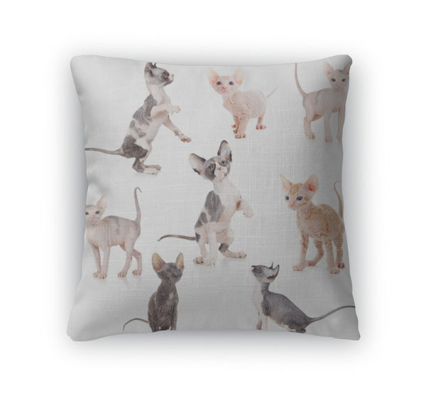 Sphynx Kittens Throw Pillow Case
