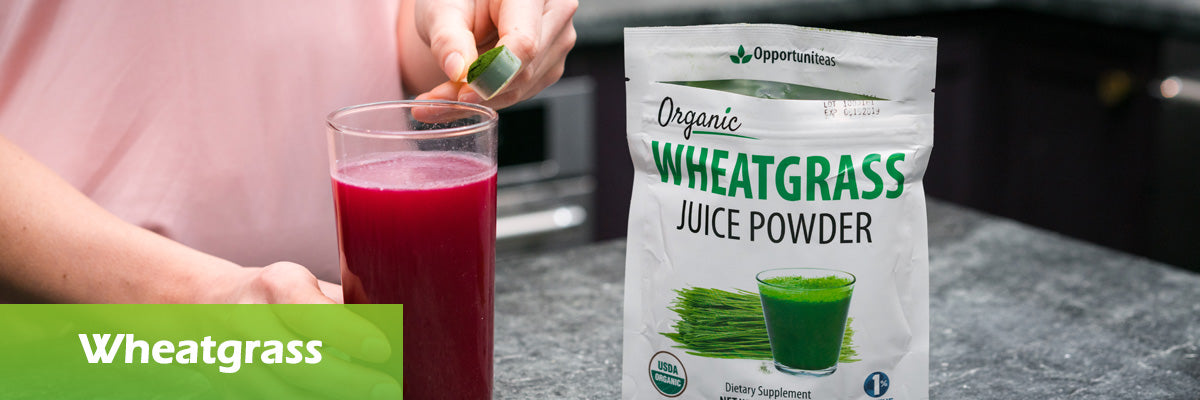 wheatgrass superfood