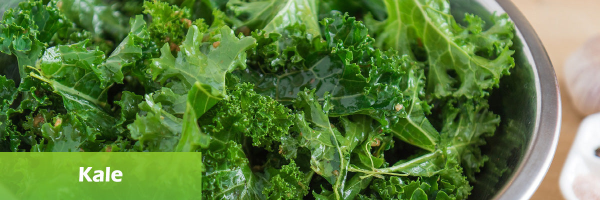 superfood kale