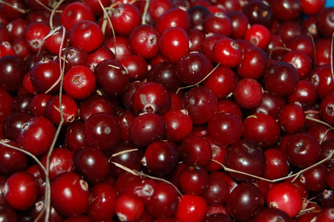 cranberries for kidney health