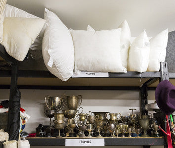 Pillows and Trophies