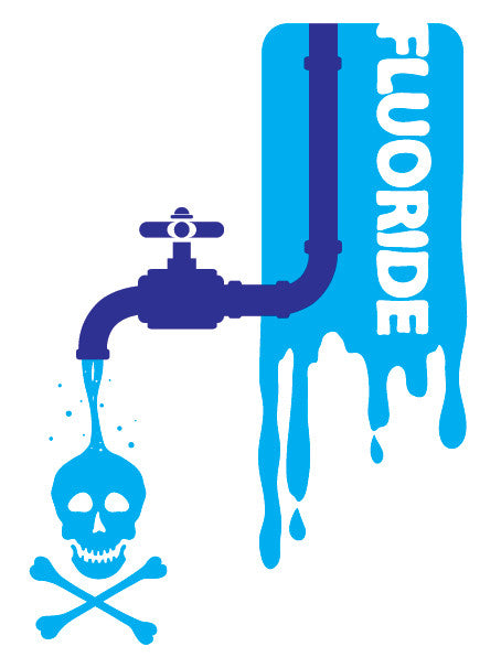 Fluoride Toxicity and the Neurobehavioural Effects of Developmental Toxicity