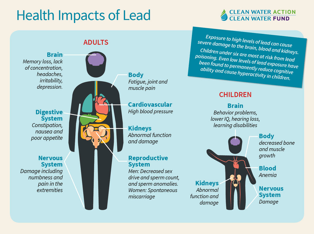 Lead in Your Water?