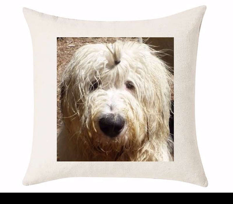 Custom Cushion Cover 50cm x 50 cm Off White