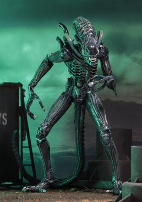 NECA - Aliens - Ultimate Alien Warrior (Blue) 7