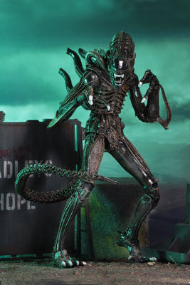 NECA - Aliens - Ultimate Alien Warrior (Brown) 7