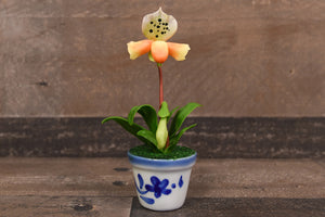 Clay Flowers Art Handmade Mini Orchid Lady Slippers Small Yellow Cute Hand Painted Flower
