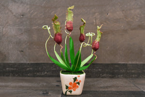Handmade Clay Flowers Mini Pitcher Plant Green Cute Carnivorous Plant