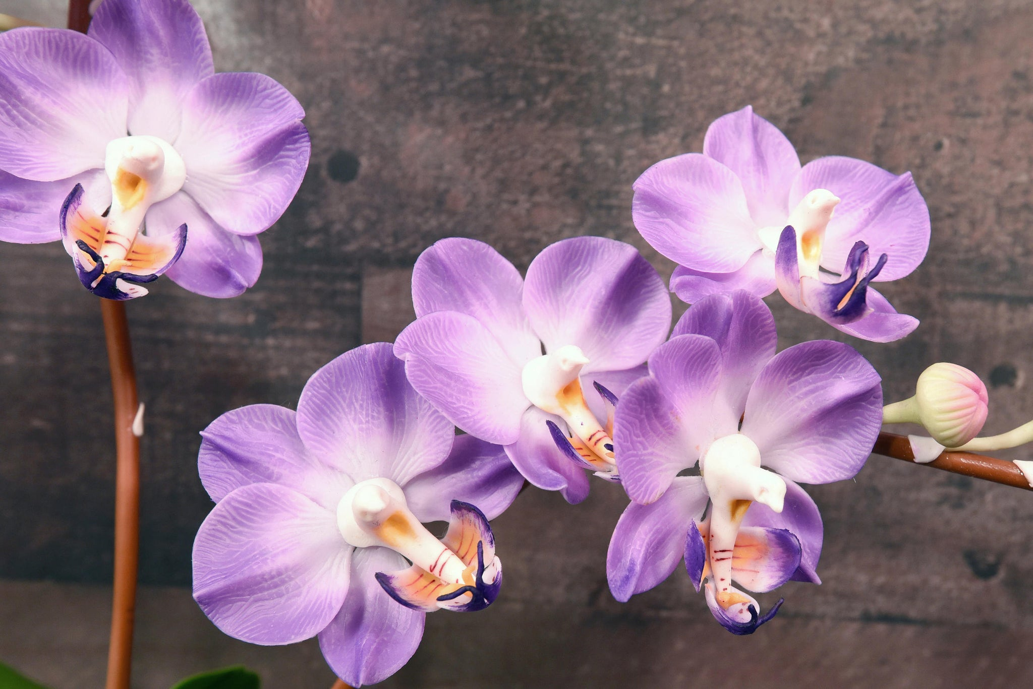 Hand sculpted clay flowers home decor handmade purple three stem hand sculpted clay flowers home decor handmade purple three stem large phalanopsis orchid hand painted flower mightylinksfo