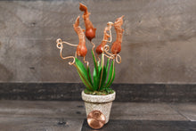Handmade Clay Flowers Mini Pitcher Plant Orange Brown Carnivorous Plant