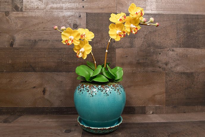 Hand Sculpted Clay Flowers Home Decor Handmade Large Phalanopsis Yellow Orchid Hand Painted Flower