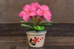 Hawaii Plumeria Flower Handmade Clay Cute Hand Painted