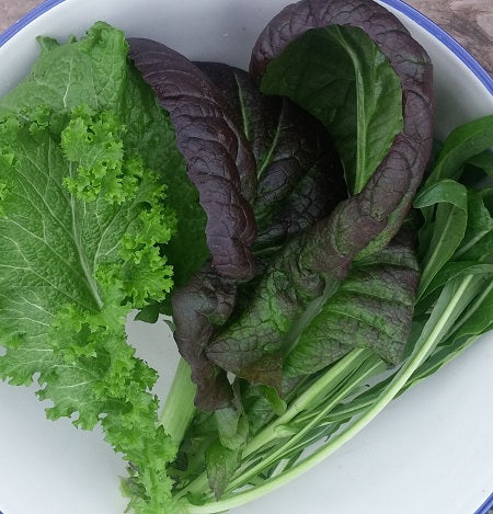 Mustard Greens, Mixed