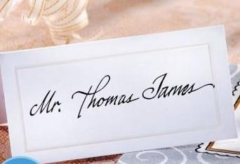 White Pearlized Place Cards 100ct